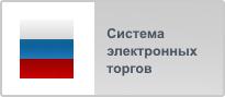 Общероссийская система электронной торговли