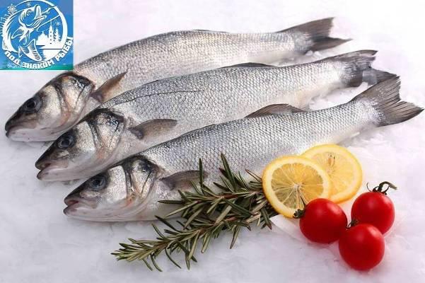 Участник фестиваля Под знаком рыбы павильон Рыбка моя