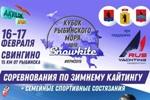 Кубок Рыбинского моря 2019 по сноукайтингу