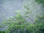 К вечеру возможны гроза, ливень и сильный ветер!