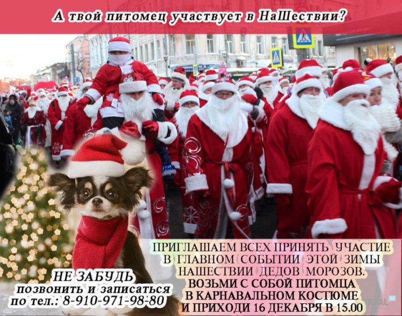 В канун года Собаки в Рыбинске состоится парад животных