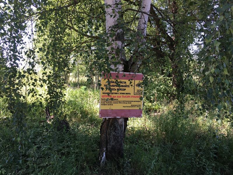 В Рыбинске вывоз мусора в частном секторе упорядочит региональный оператор