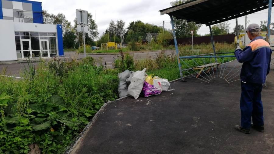 В Рыбинске «мусорных» нарушителей фиксировали фотоловушки