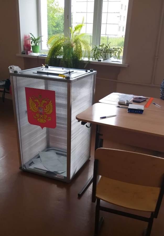 В Рыбинске продолжается голосование по поправкам в Конституцию РФ